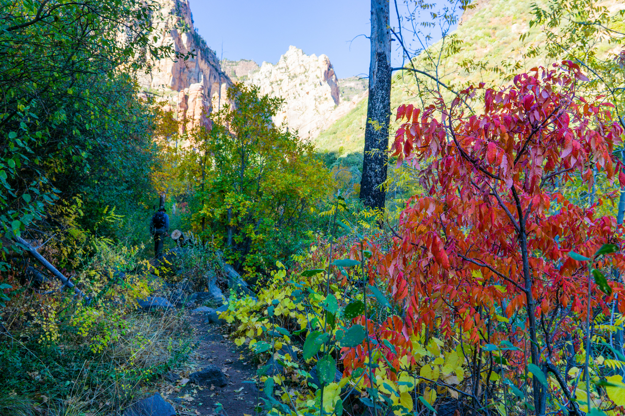 Sedona in full glory!